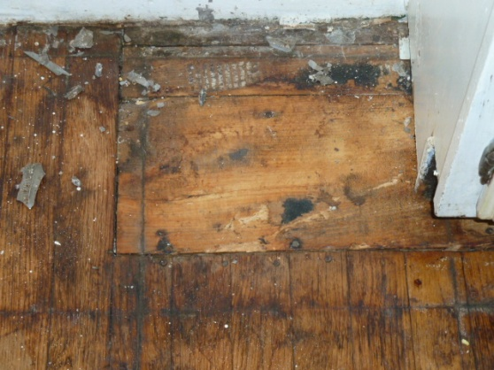 Can this floor be restored?-p1000162.jpg