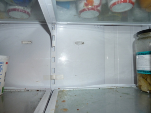 GE refrigerator defrost problems (with pics)-p1000408.jpg