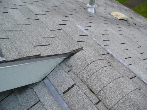 Dishonest roofing companies, or corporate propoganda?-p1010002.jpg