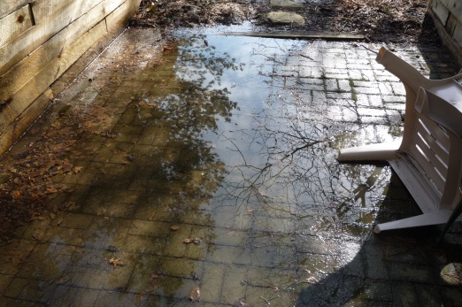 Help! Paver Patio With Standing Water - Landscaping & Lawn