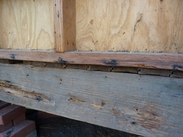 replacing rotten rim joist-p1020557-small-.jpg