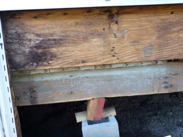 replacing rotten rim joist-p1020559-small-.jpg
