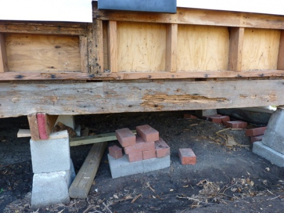replacing rotten rim joist-p1020562-small-.jpg