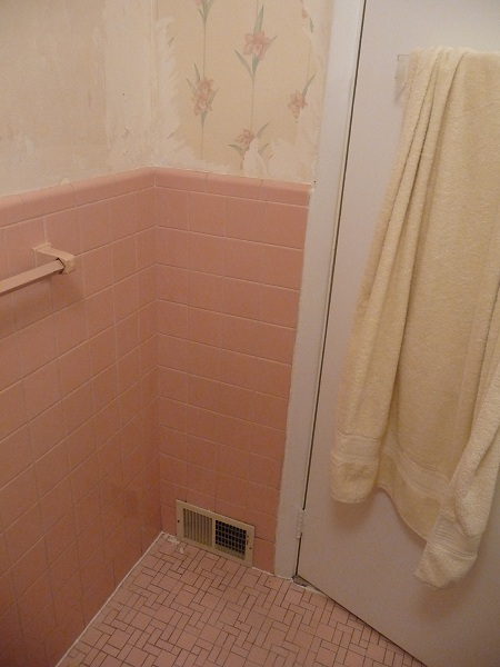 Bathroom Help please-p1020800a.jpg