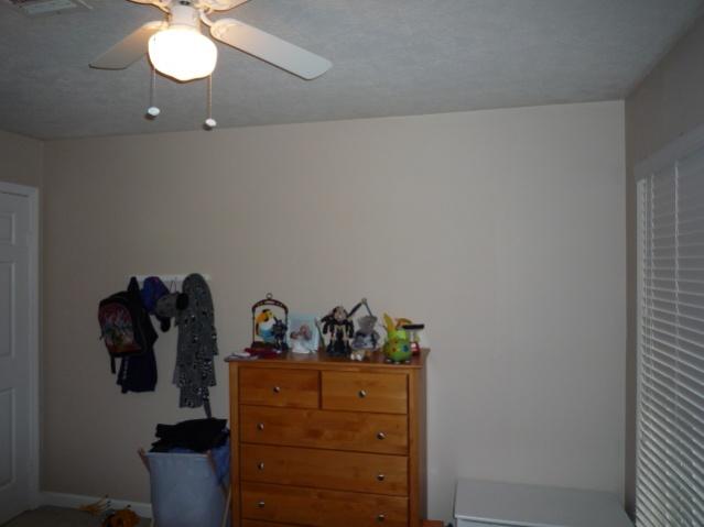 Building White Shelves-p1050396.jpg