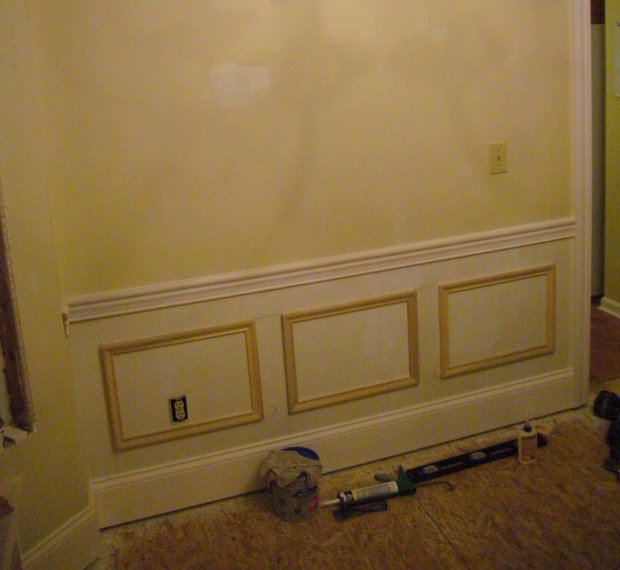 Wainscot Question-p1050684.jpg
