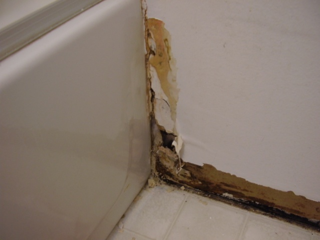 My bathroom needs a hillbilly repairman.-p1080007.jpg