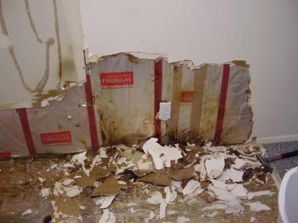moldy wet sheetrock at base of bathtub-p1100056.jpg