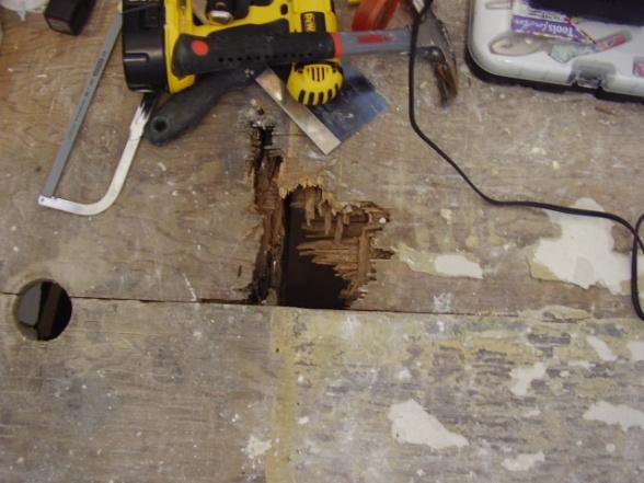 moldy wet sheetrock at base of bathtub-p1100073.jpg