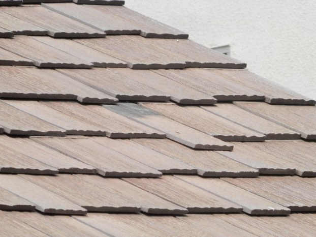 Looking for advice on roof repair-p4140247.jpg