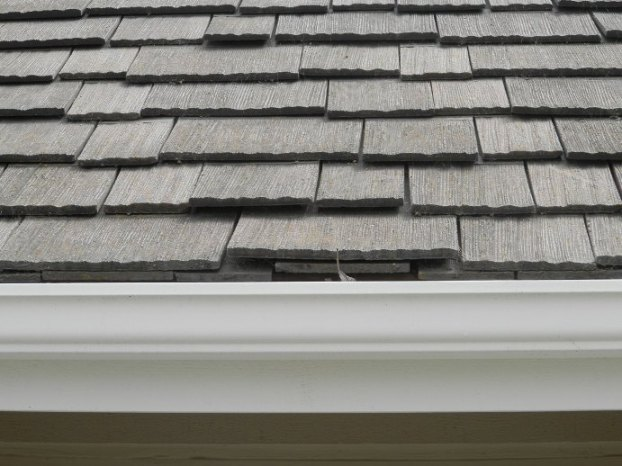Looking for advice on roof repair-p4140256.jpg