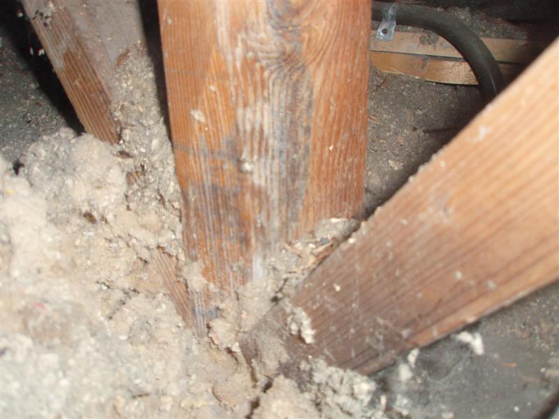 Load Bearing (point Load) Wall Removal Advice-p8220131-20-medium-.jpg