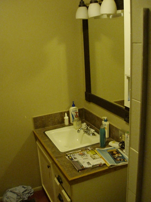 4 5 Ft X 9 Ft Bathroom Remodel   Help  - Kitchen  U0026 Bath Remodeling