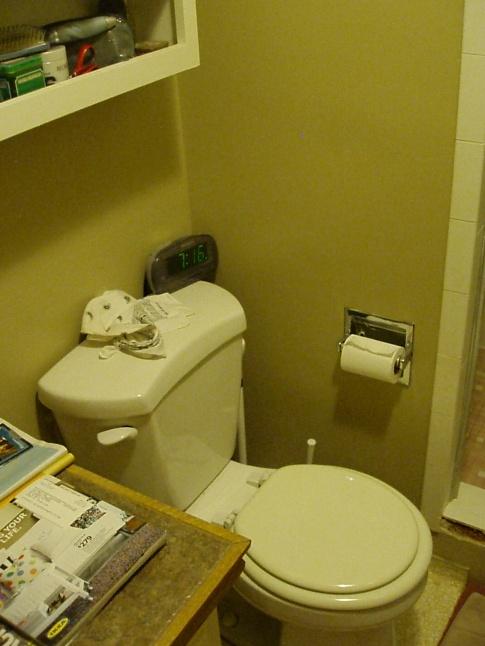 Remodel Bathroom Help 4.5 ft x 9 ft bathroom remodel = help! - kitchen & bath remodeling