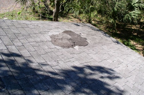 shingle roof leak and hurricane questions-pa120004_tn_.jpg