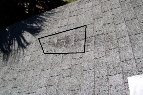 shingle roof leak and hurricane questions-pa120013_tn_.jpg