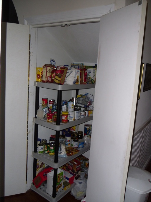 Pantry Sliding Shelves-pantry.jpg