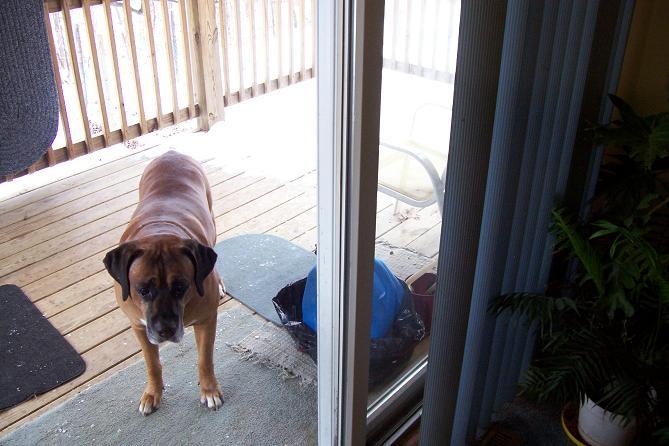 Leaking windows??-patio-door-002aa.jpg