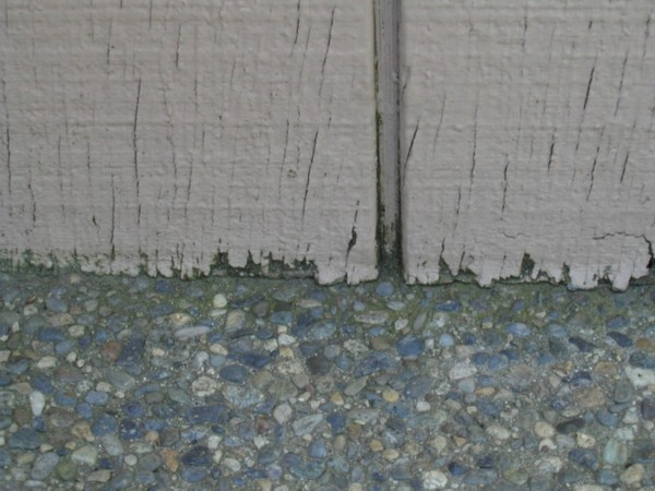 Patio Poured up to the T111 Siding and ROT!-patio1.jpg