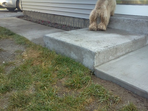 Masonry Contractor Issues-patioheight.jpg