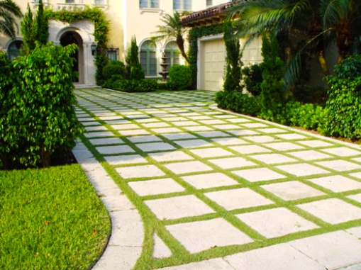 Grass between Pavers-pavers-outlined-grass-driveway-520.jpg