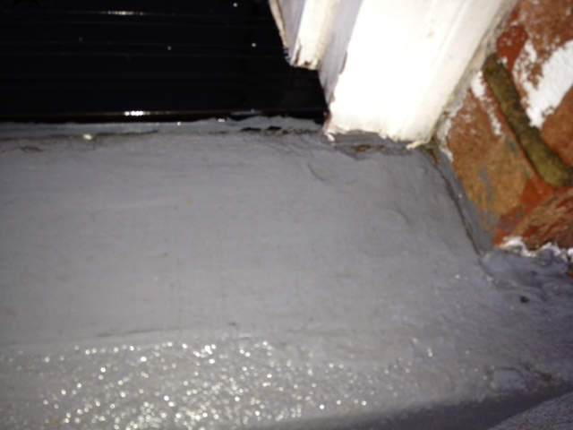 Need help fixing sill plate / rim joist due to carpentar ants / water-photo-1-1-.jpg
