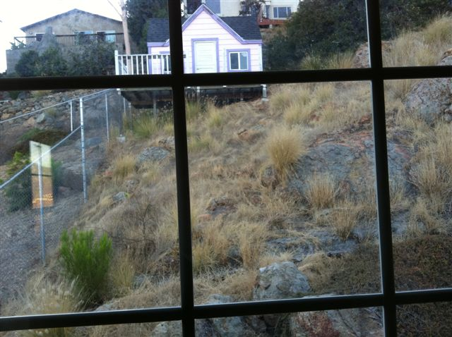 Hillside Backyard... Thoughts?-photo-1.jpg