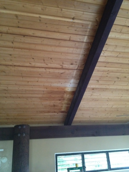 staining to match discolored wood tongue and groove ceiling