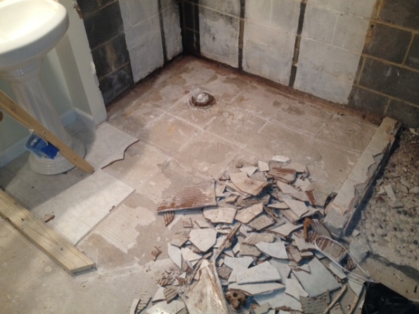 2012 - Basement demo-photo-1.jpg