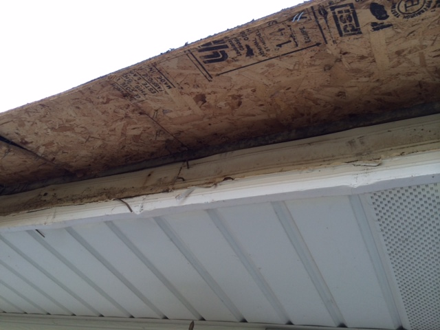 Replace Rolled Roofing with Shingles-photo-1.jpg