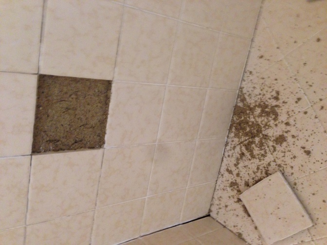 Looks/Feels like sand behind shower tile-photo-1.jpg