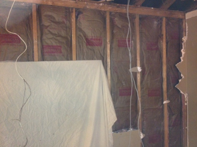 Replace Wall Insulation??-photo-10-copy.jpg