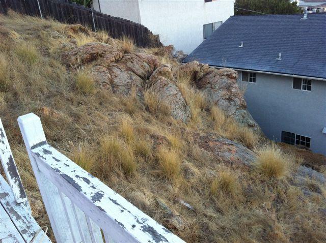 Hillside Backyard... Thoughts?-photo-2.jpg