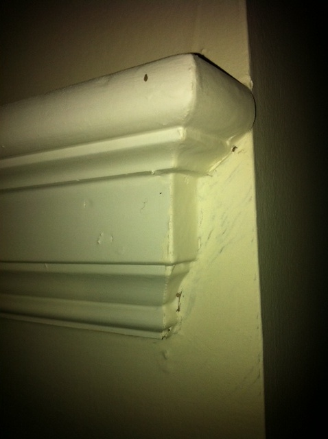 Where can I buy this picture moulding?-photo-2.jpg