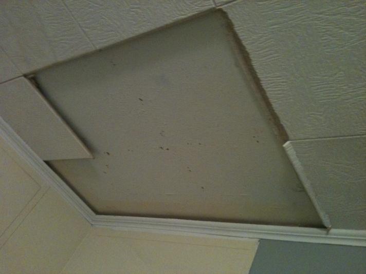 Drywall Repairable?-photo-2.jpg