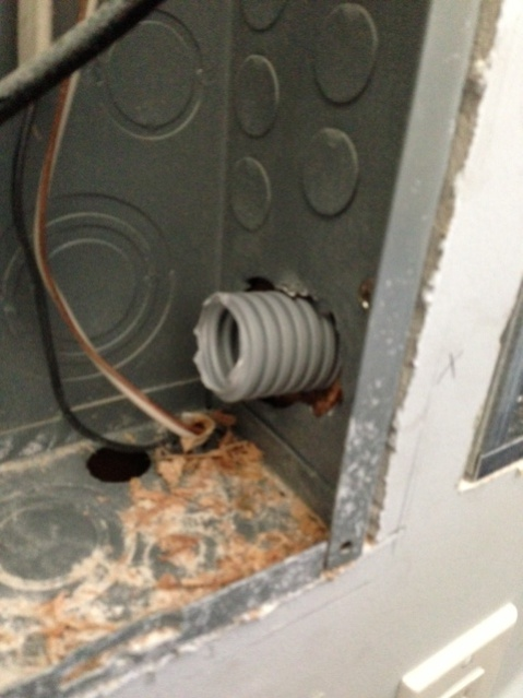 Installed a Transfer Switch... Will this pass code ???-photo-2.jpg