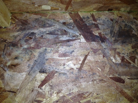 Mold in my basement on the rim joist-photo-2-.jpg