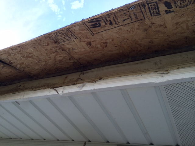Replace Rolled Roofing with Shingles-photo-2.jpg