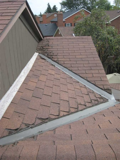 Help! -- what is causing these shingles to fail?-photo-3-6325.jpg