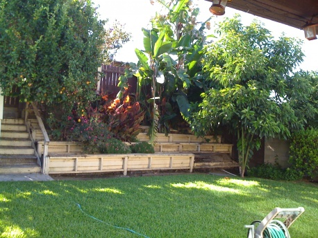 HELP!!! How do I fix my backyard?-photo-3.jpg