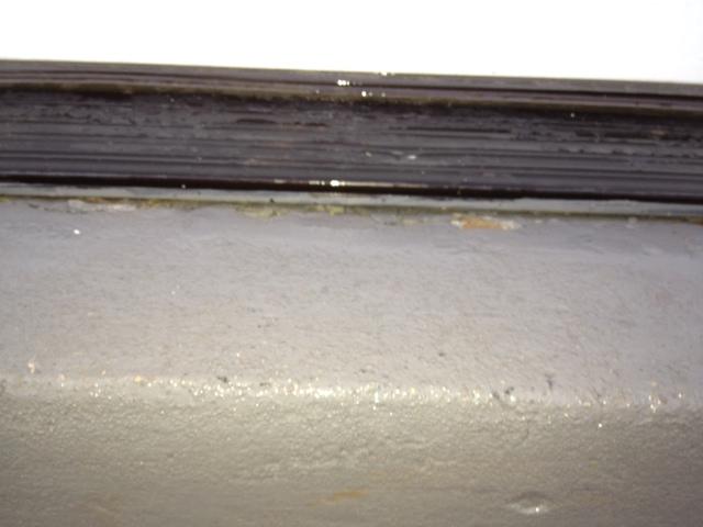 Need help fixing sill plate / rim joist due to carpentar ants / water-photo-3.jpg