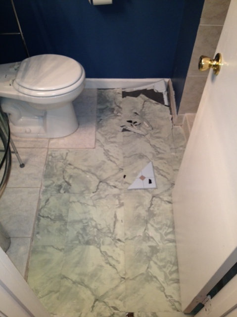 Bathroom Demo 2013-photo-3.jpg