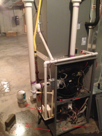 Water under my furnace-photo-4.jpg