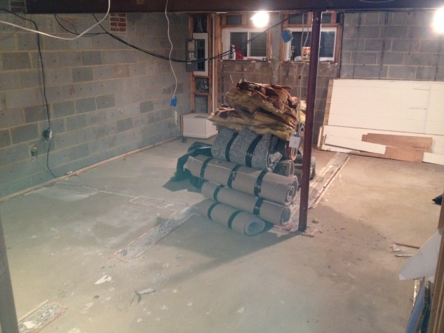 Help building up my basement floor.-photo-5.jpg