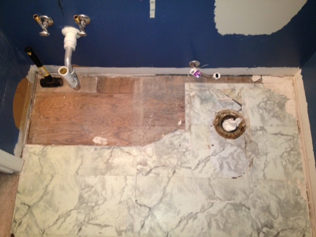 Bathroom Demo 2013-photo-5.jpg