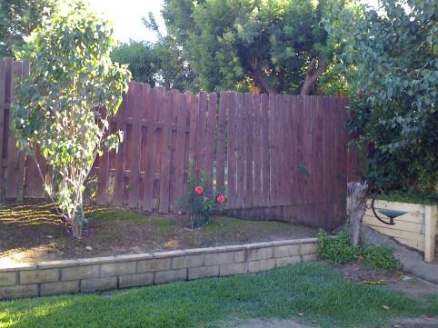 Incroyable How Do I Fix My Backyard? Photo 6.