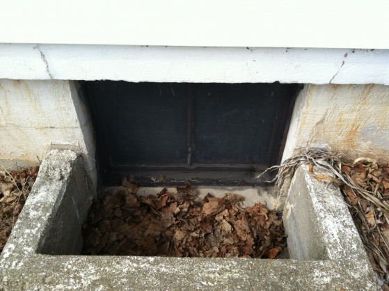 Egress Window Header-photo-6.jpg