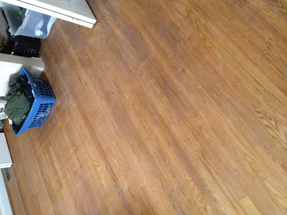 Lightly Sanding and Poly-ing floors & Spot refinsihing-photo-8.jpg
