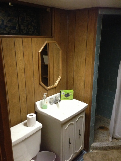 Basement Bath Remodel-photo-99.jpg
