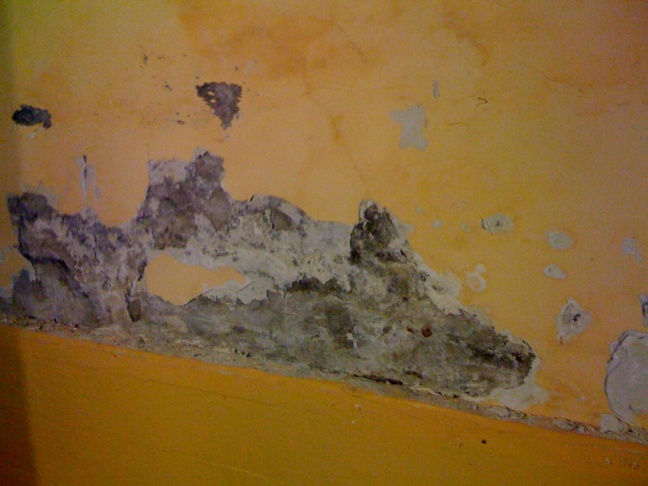 Brick Foundation Wall Question-photo.jpg